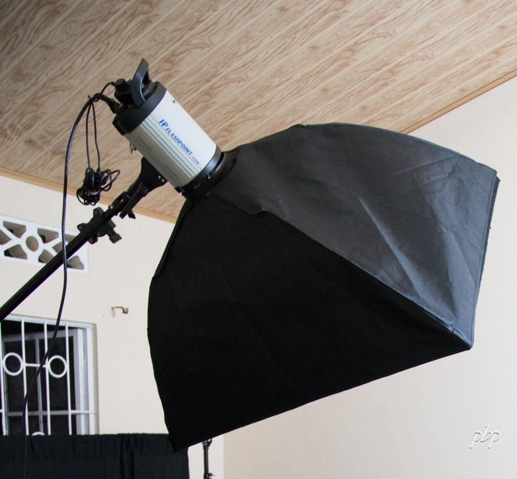 IMG_6043 Flashpoint 320M 150 Watt AC/DC Monolight Strobe