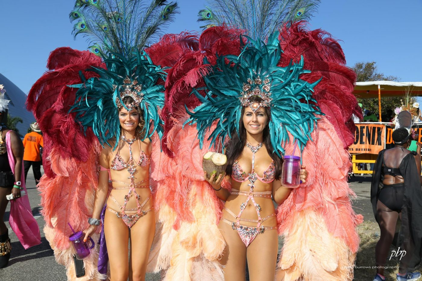 Pity, that Trinidad and tobago carnival consider