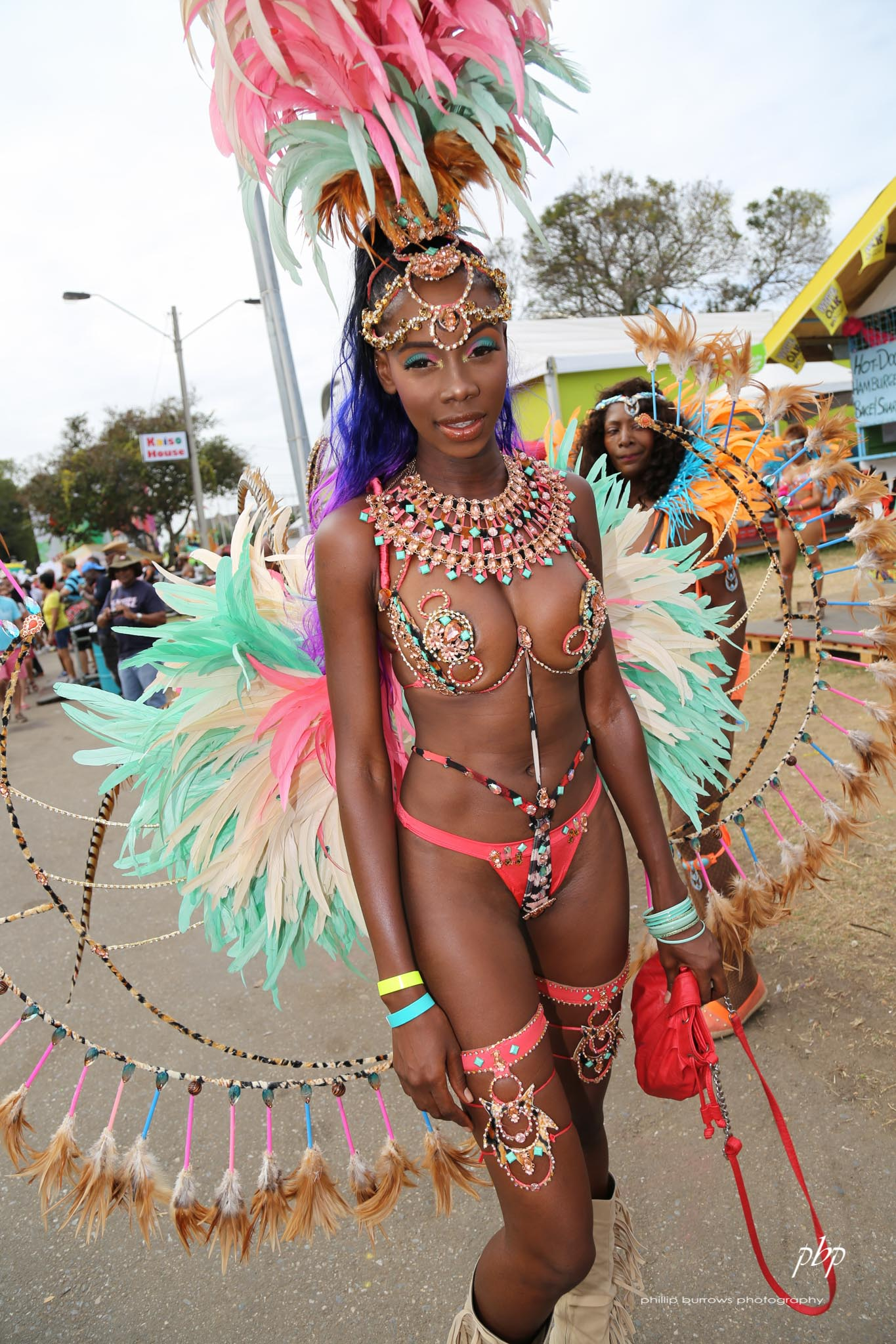 Thank for Trinidad and tobago carnival interesting. Tell